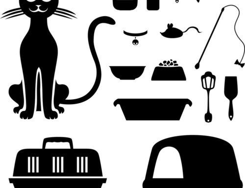 Vertalersjargon: de vertaler vertaald